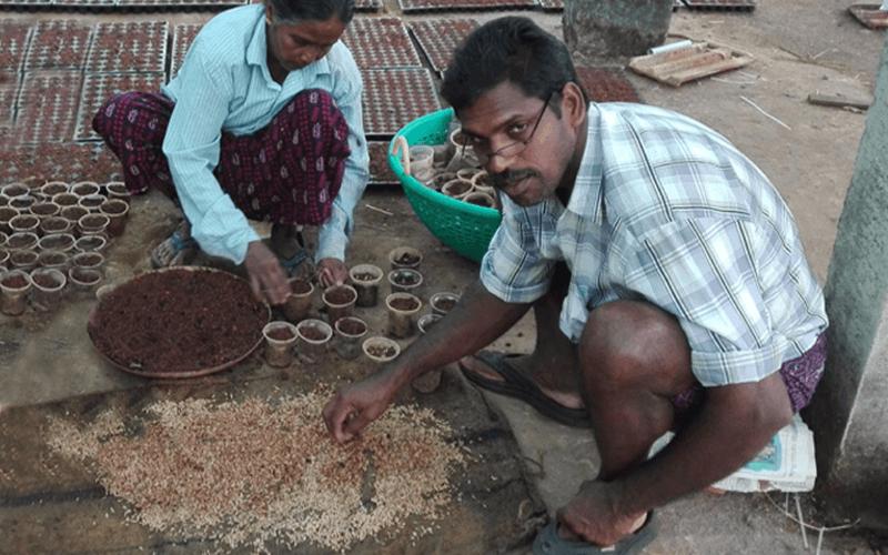 Pflanzaktion nach der Flut in Kerala