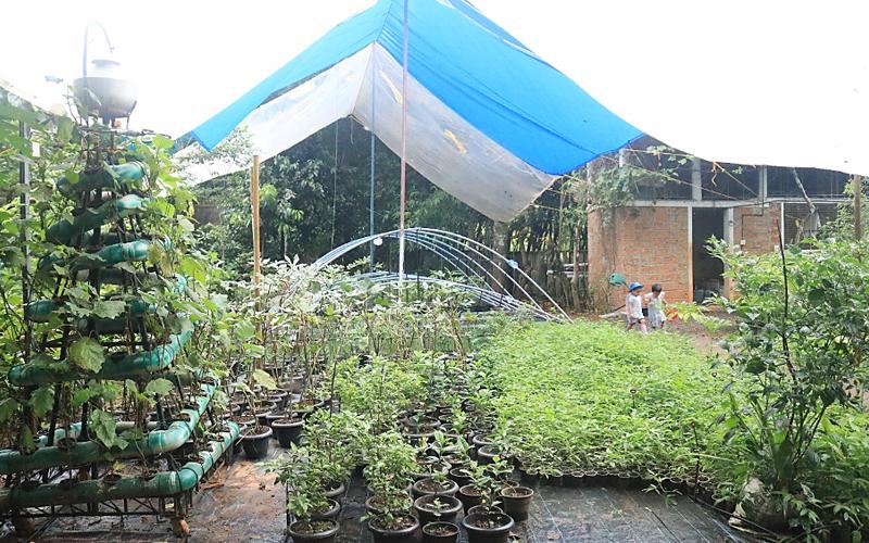 Projekte in der biologischen Landwirtschaft